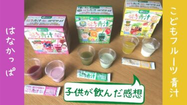 【子供が飲んだ感想】はなかっぱのこどもフルーツ青汁3種の徹底比較