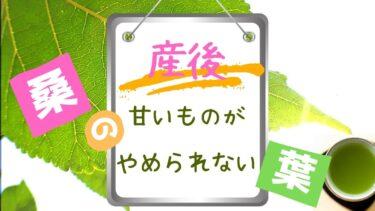 【今話題!桑の葉茶3種を厳選比較】甘いものがやめられない産後の味方!
